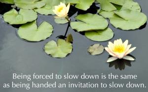 Slow_down_lg