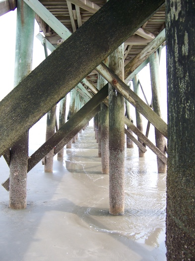 Beach posts, Isle of Palms, South Carolina. Unexpected, warm and humid balmy ah-h-h.