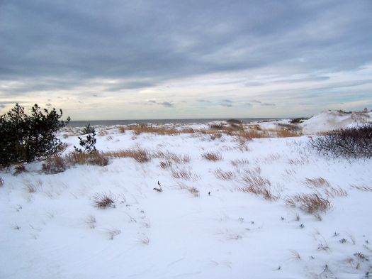 Beach Snow, New York