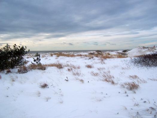 Beach Snow, New York