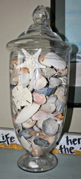 My seashells from sooo many different places.  I have these in jars all over the place.  In every room.