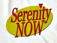 serenity-now.american-apparel-unisex-fitted-tee.white.w760h760