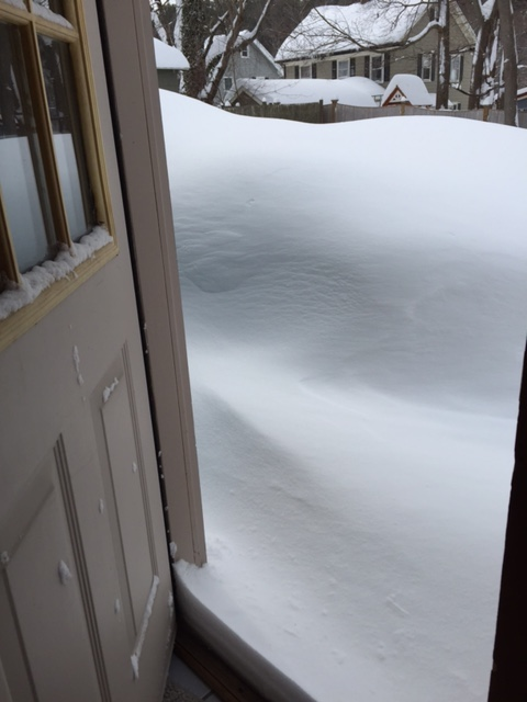 A friend sent me this picture of her house/yard. She didn't once use the words pure or driven.