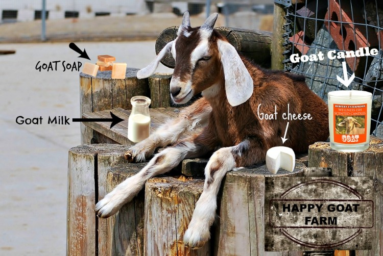 Goat Farm Dream. You'd smile too if you could make all these products.