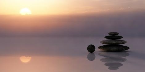 Finding Dharma